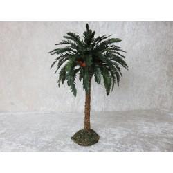 Palme blühend 25 cm