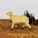 Schaf stehend 3,5 cm